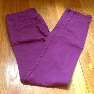 Celebrity Pink Purple Straight Leg Jeans
